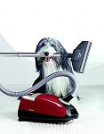 Miele Complete C2 Powerline Cat and Dog Cylinder Vacuum Cleaner